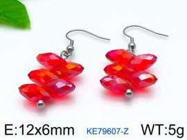 Stainless Steel Stone&Crystal Earring
